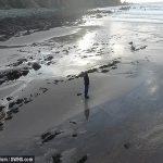 Bãi biển mất tích
