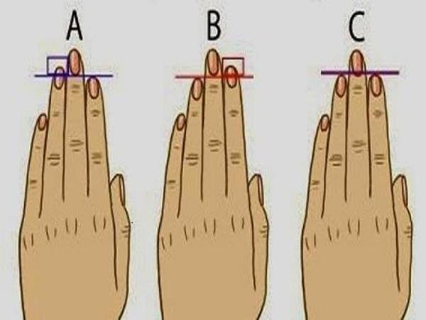 Xem tính cách qua độ dài ngón tay